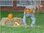 111_pumpkin